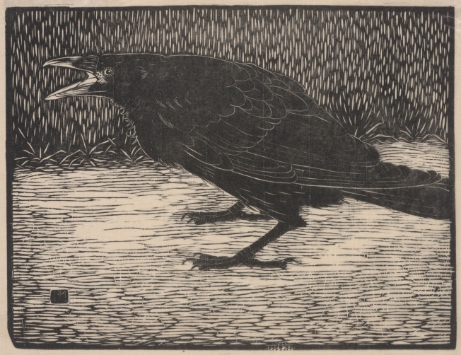 The Crow [Jan Mankes]